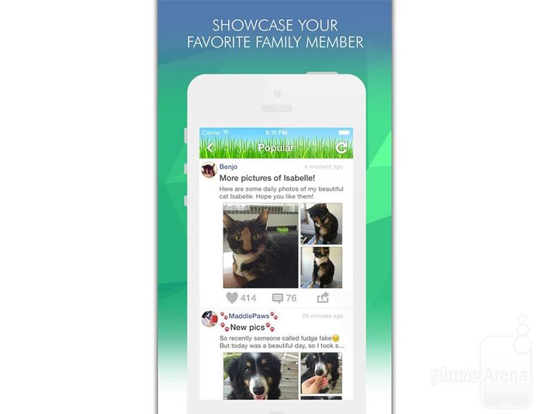 Pets Amino شبکه ای اجتماعی برای دوستداران حیوانات