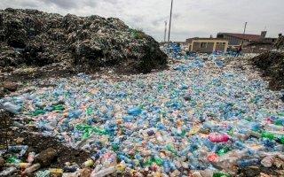 آنزیم های جهش یافته ای که بطری های پلاستیکی را می خورند
