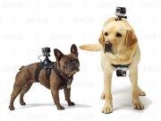 بند نصب بر روی حیوانات KingMa Dog Harness
