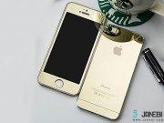 خرید محافظ صفحه نمایش شیشه ای پشت و رو طلایی Apple iphone 5/5S