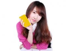 محافظ گوشی  Huawei Ascend Y300