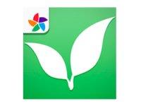 myPlants برنامه ای با اطلاعات کامل در مورد گیاهان آپارتمانی