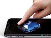 محافظ صفحه نمایش شیشه ای آیفون Spigen GLAS.tR Slim HD Screen Protector iPhone 7/8
