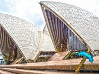ماین کرفت به خانه اپرای سیدنی میرود