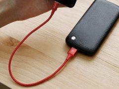 کابل شارژ و انتقال داده بیسوس Baseus Type-C Cable 25cm