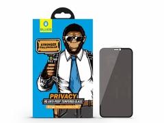 محافظ صفحه نمایش شیشه ای نانو حریم شخصی آیفون Blueo 3D Anti Peep Glass Apple iPhone XS Max