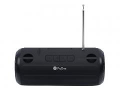 اسپیکر بلوتوثی قابل حمل پرووان ProOne PSB 4615 Portable Speaker