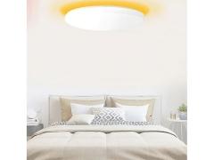 لامپ سقفی هوشمند شیائومی Xiaomi Yeelight Portable LED Lamp 650 YLTD02YL