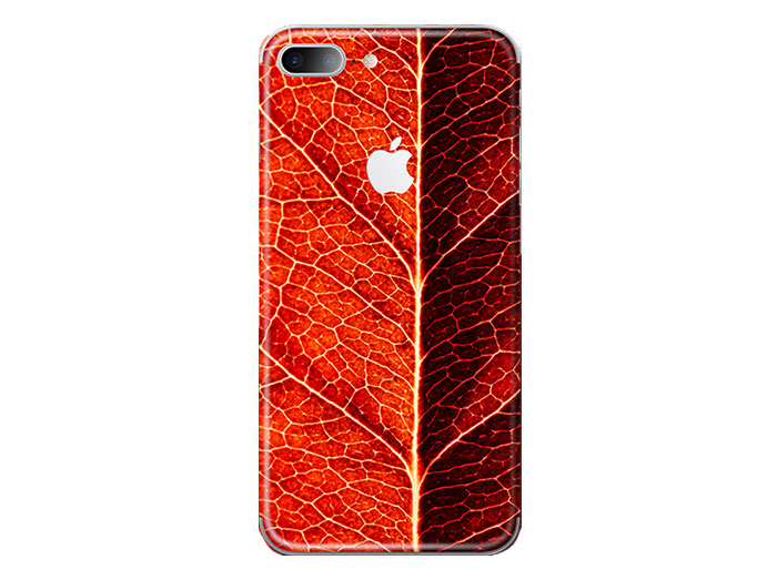 برچسب محافظ طرح دار راک آیفون Rock Red Leaf Creative Protector Apple iPhone 7 Plus