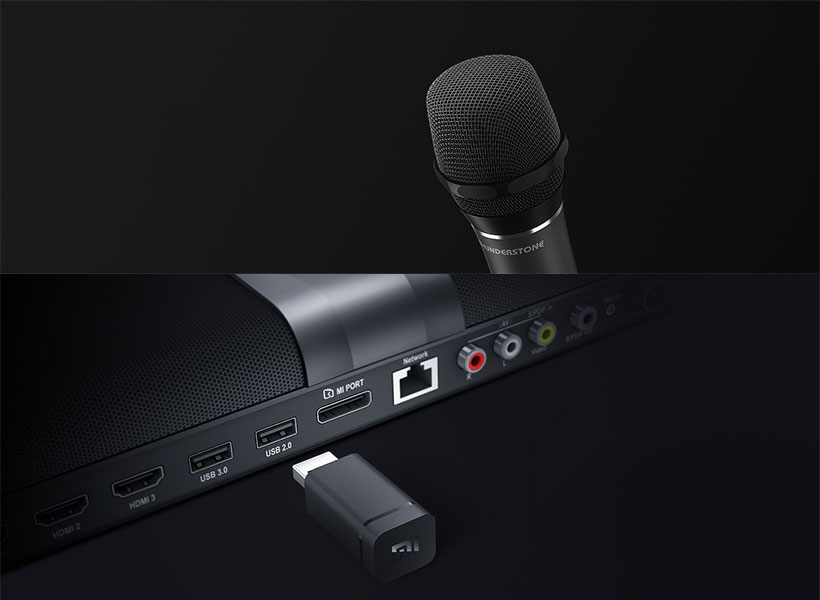 میکروفن بی سیم شیائومی Xiaomi Leishi KTV Professional Wireless Microphone