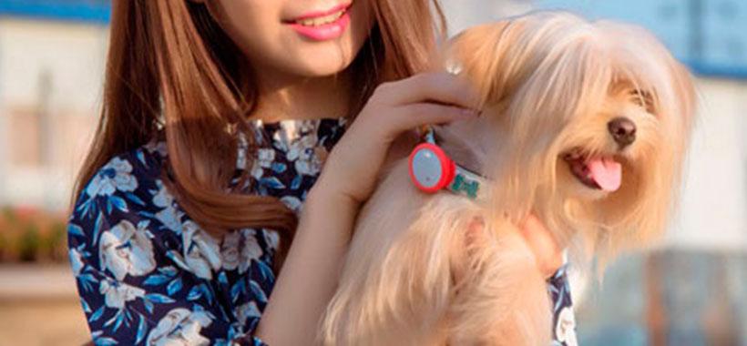 رد یاب شیائومی مناسب برای حیوانات خانگی