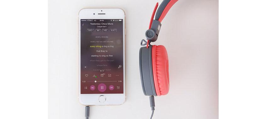 Rock Y10 Stereo Headphone